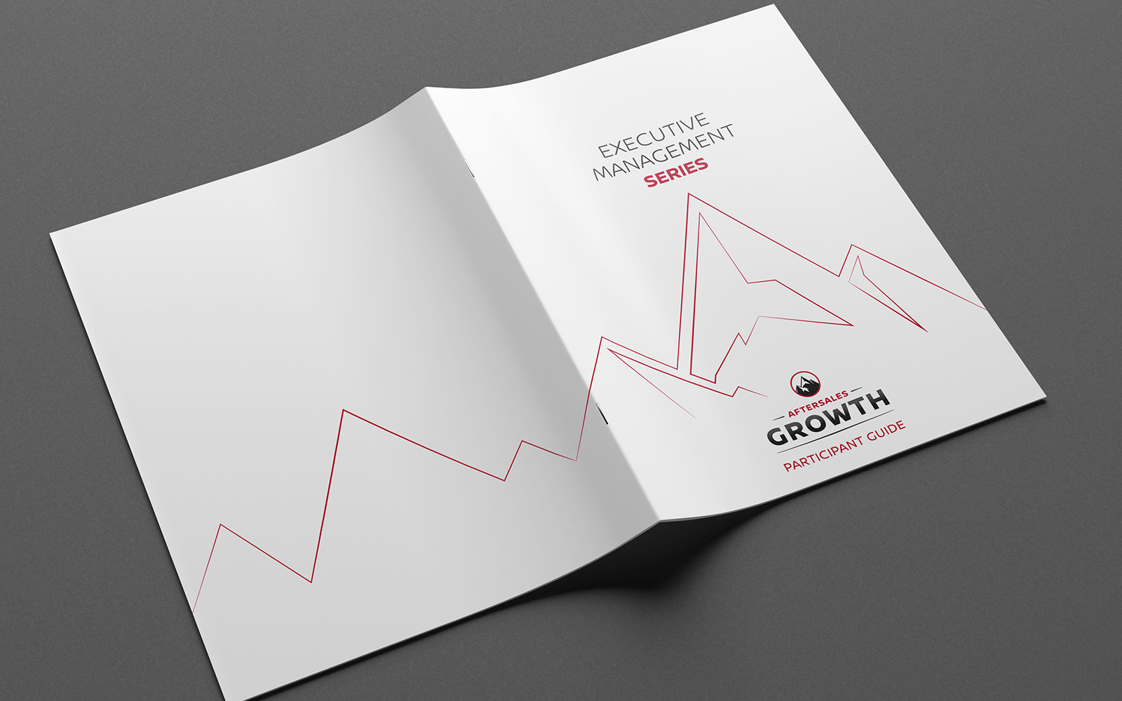 Participant guide design with custom visual treatment